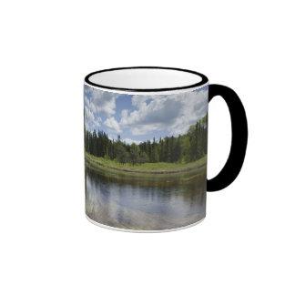 A Still Pond Reflecting The Clouds Ringer Mug