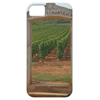 A stone portico to the vineyard iPhone 5 covers