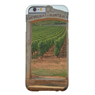 A stone portico to the vineyard iPhone 6 case