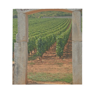 A stone portico to the vineyard memo pad