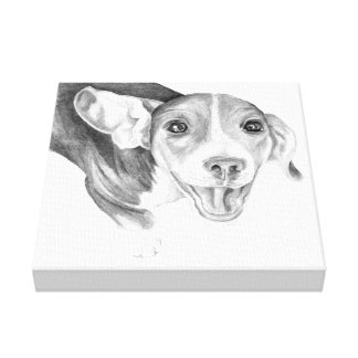 A Story To Tell, A Beagle Puppy Canvas Print
