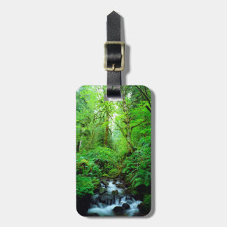 A stream in an old-growth forest luggage tag