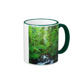 A stream in an old-growth forest ringer mug