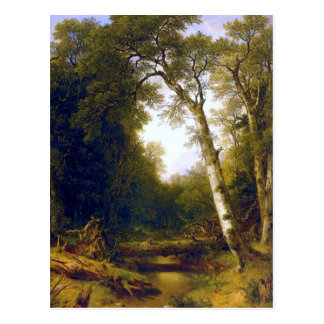 A Stream in the Woods - Durand Postcard