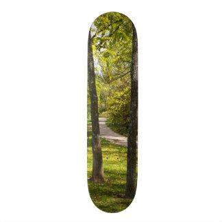 A Stroll in the Park SkateBoard