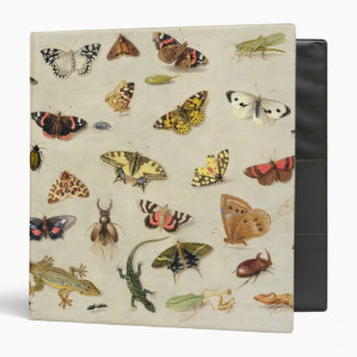 A Study of insects Binder