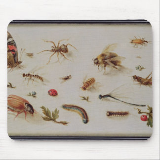 A Study of Insects Mouse Pad
