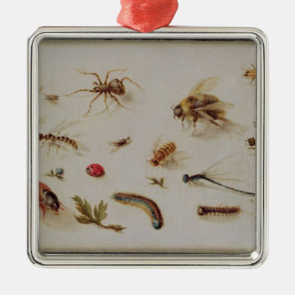 A Study of Insects Christmas Tree Ornaments