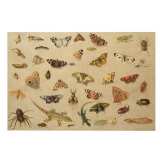 A Study of insects Wood Print