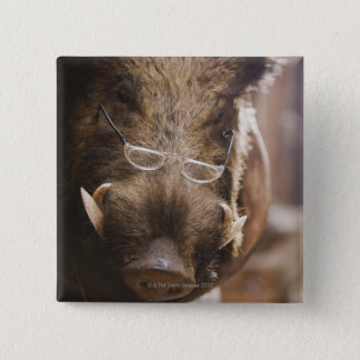 a stuffed wild boar wearing glasses outside a button