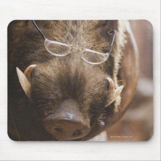 a stuffed wild boar wearing glasses outside a mouse pad