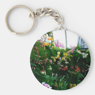 A stunning display of exotic orchids growing keychains