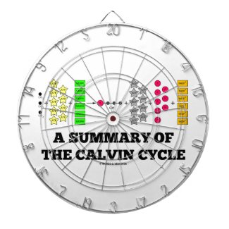 A Summary Of The Calvin Cycle (Photosynthesis) Dart Board