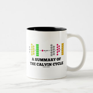 A Summary Of The Calvin Cycle (Photosynthesis) Two-Tone Coffee Mug