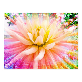 A summer Dahlia flower on vivid background Postcard