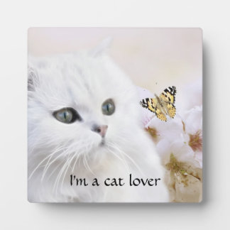 A summer kitten plaque