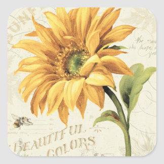 A Sunflower in Full Bloom Square Sticker