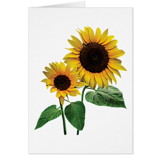 A Sunflower Mommy's Love Card