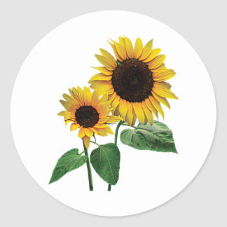 A Sunflower Mommy's Love Classic Round Sticker