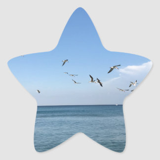 a sunny day at the beach star sticker