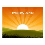 A Sunny Day Postcard