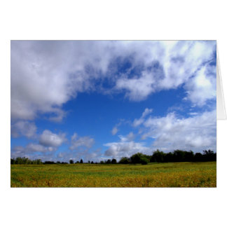 A Sunny Saturday In The Country #1 Card