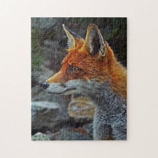 A Super Cute Fox Puzzle