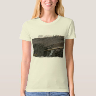 A surfboard sits on the beach in Florida on cliff T Shirts