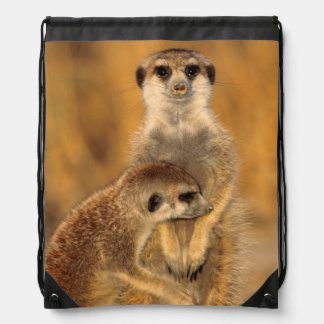 A Suricate mother and young interacting Drawstring Backpack