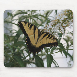 A SWALLOWTAILS  RESTING PLACE MOUSE PAD