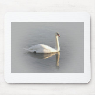 A swan gliding by mouse pad