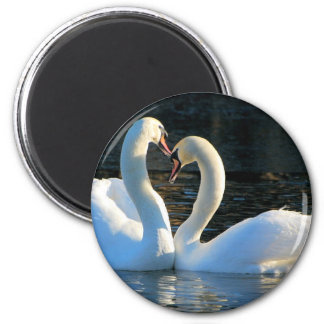 A Swan Heart Kiss, Reflections of Love 2 Inch Round Magnet