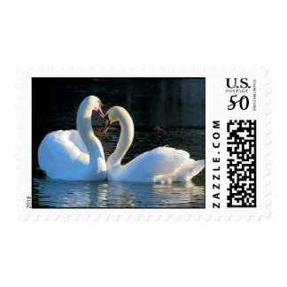 A Swan Heart Kiss, Reflections of Love Postage