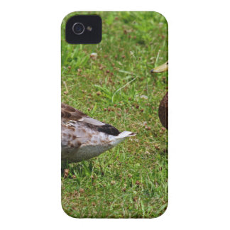 A Sweeping Romance Case-Mate iPhone 4 Case
