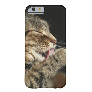 A tabby cat licking his paw. barely there iPhone 6 case