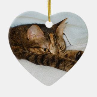 A Tabby Cat Stretching Felis Silvestris Catus Christmas Ornament