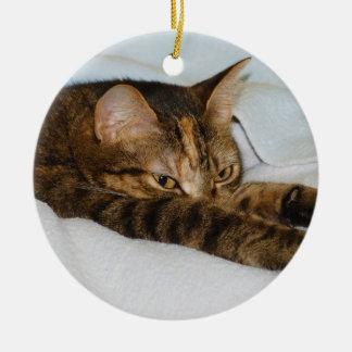 A Tabby Cat Stretching Felis Silvestris Catus Ornaments