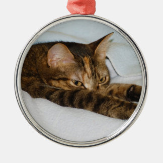 A Tabby Cat Stretching Felis Silvestris Catus Round Metal Christmas Ornament