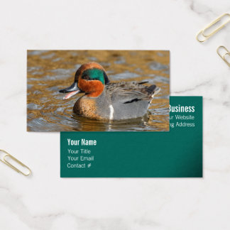 A Talkative Green-Winged Teal Business Card