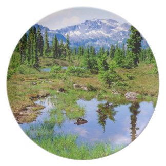 A tarn in the backcountry of Vancouver Island Melamine Plate
