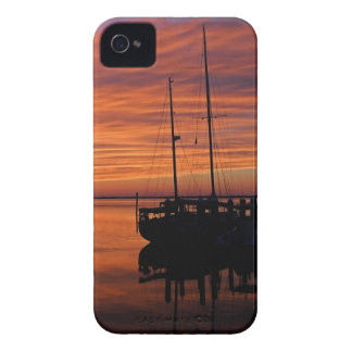 A Tarpon Tryst iPhone 4 Case