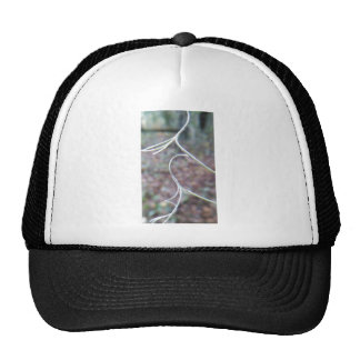 A tendril of affection trucker hat