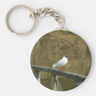 A tern - keychain