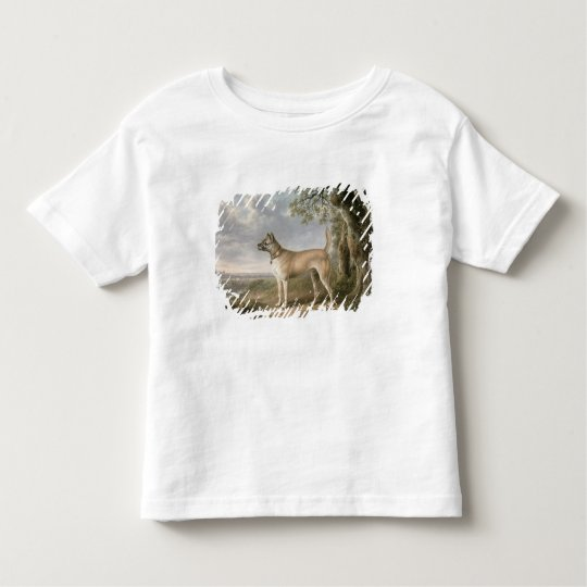 A Terrier on a path in a wooded landscape Toddler T-shirt