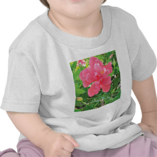"""""""A Thing of Beauty is a Joy Forever.""""  T-Shirt"""