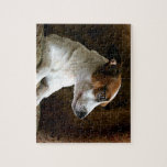 A Thinking Jack Russell Terrier Puzzle