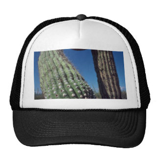 A Thorny Punch Trucker Hat