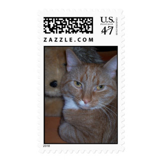 A Thoughtful Cat Postage