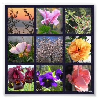 A tic-tac-toe of Flowers Photo Print