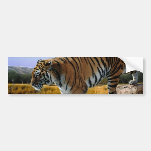 A Tiger loves water Bumper Stickers